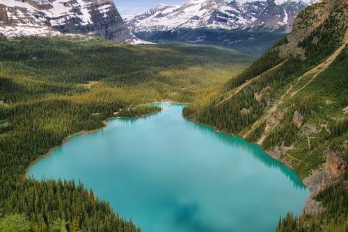 Lago O'Hara en Canadá