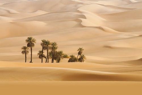 Desierto del Sahara en Argelia