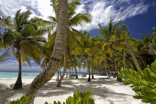 Playa en Roatán, Honduras