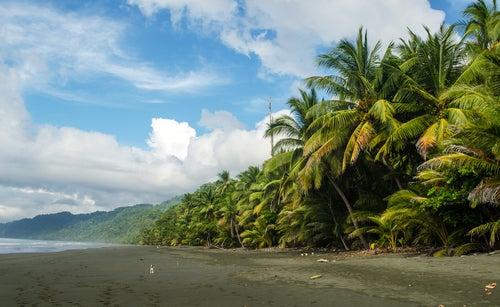 La península de Osa, tesoro natural de Costa Rica