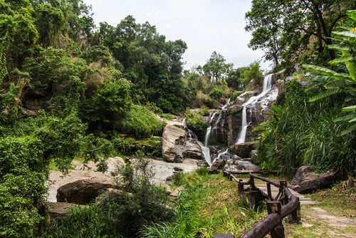 Parque Nacional Doi Inthanon en Tailandia