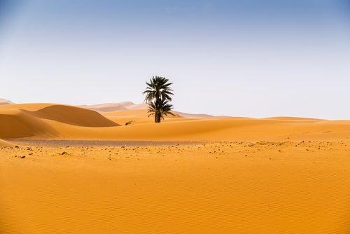 Los 10 países más cálidos del mundo