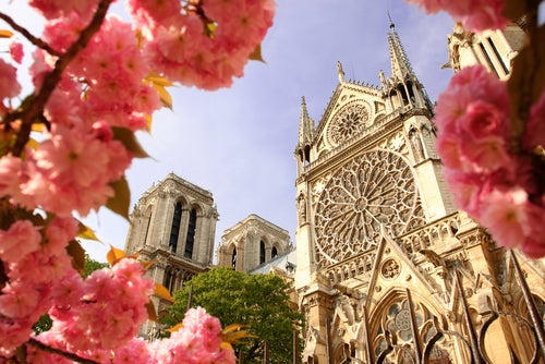 Catedral de Notre Dame de París