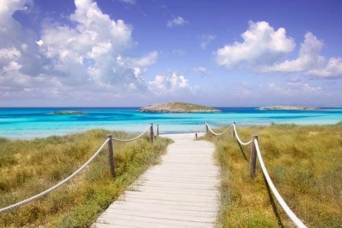 Las mejores rutas verdes de Formentera