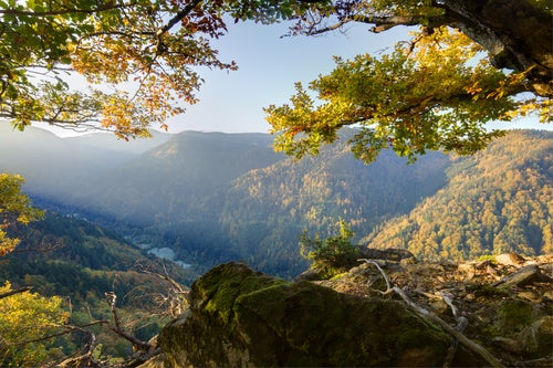 Parques Nacionales de Alemania