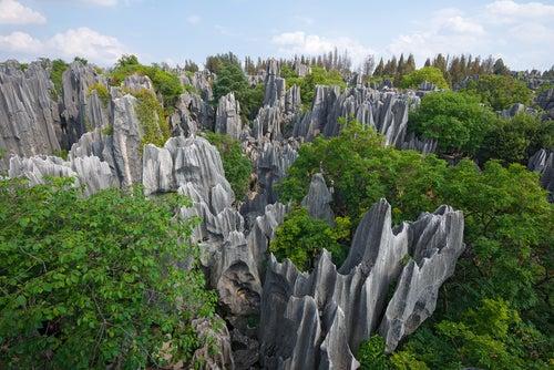 Un paseo por el Bosque de Piedra en China