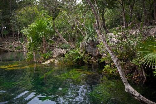 Parque Nacional Tulum
