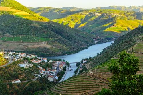 Valle del duero en el norte de Portugal