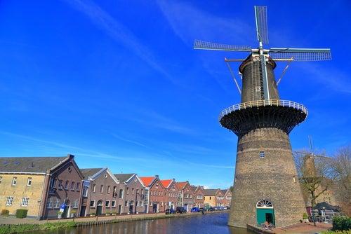 Molino en Schiedam