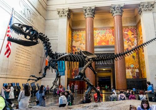 Museo de Ciencias de Nueva Yor
