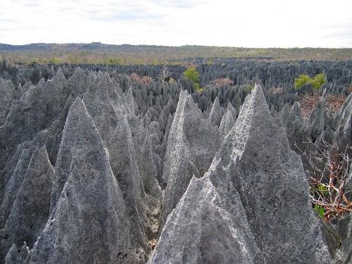 Pináculos en Tsingy