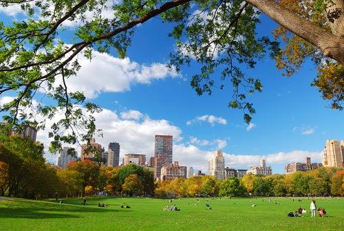 5 razones para visitar Nueva York este verano