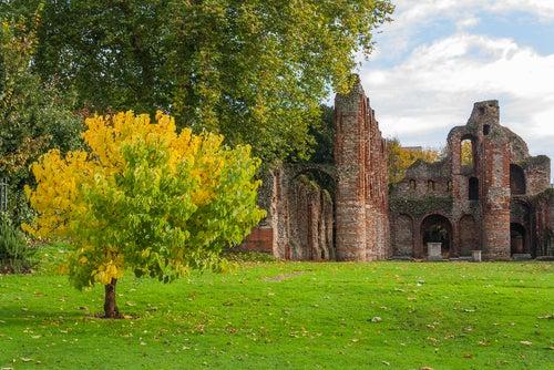 Priorato de Colchester