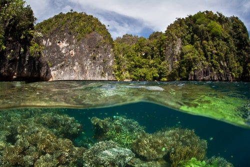 Islas Limestone en Raja Ampat