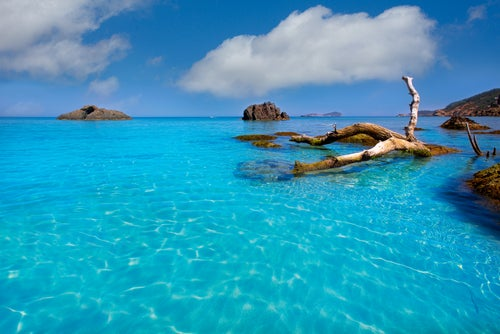 Playa de Aguas Blancas en Ibiza