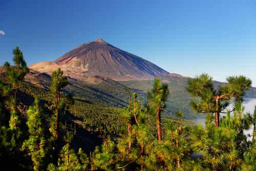 7 cosas que hayque ver en Canarias, sin excepción