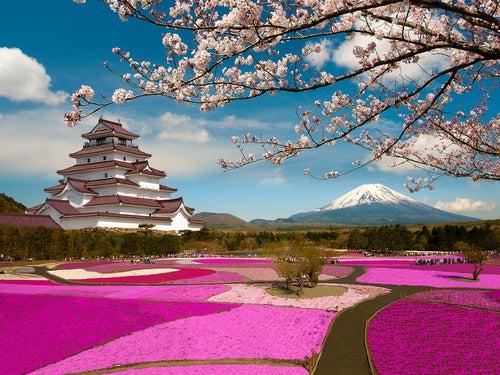 5 datos (o más) sobre Japón que te sorprenderán