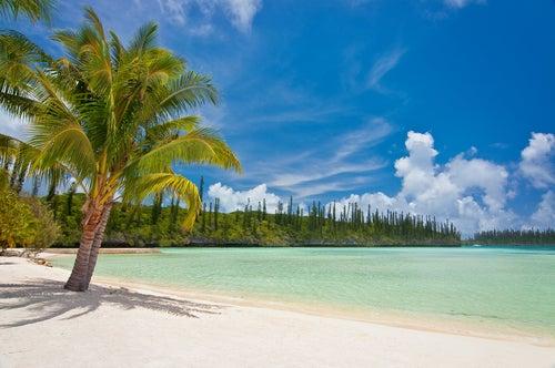 Isla de los Pinos en Nueva Caledonia