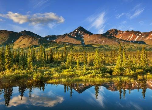 Tundra en Alaska.