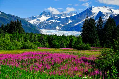 Paisajes sorprendentes de Alaska