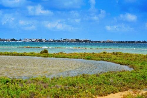 Estany des Peix en Formentera