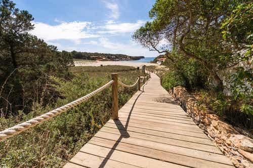 Conoce Formentera siguiendo sus rutas verdes