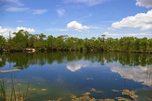 Big Pine Key en Cayos de Florida