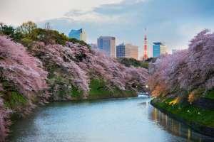 Parques urbanos de Tokio, Ueno PArk