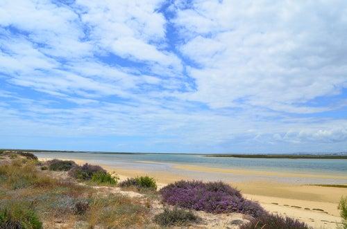 Ilha deserta en Algarve