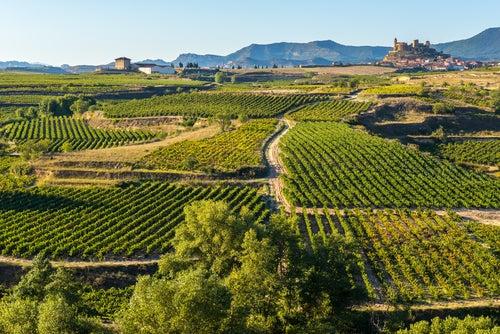 Una escapada perfecta por tierras de La Rioja