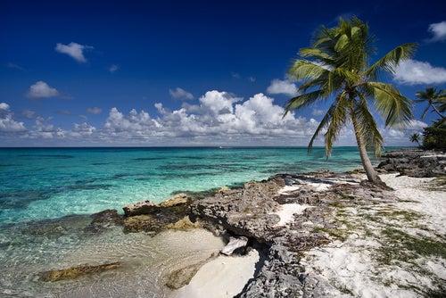 Aruba, un paraíso en la tierra