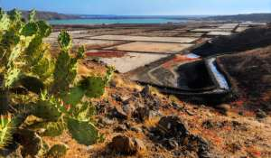 Salinas de Janubio en Lanzarote