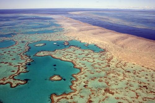 Gran Arredife de Coral