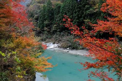Isla Shikoku