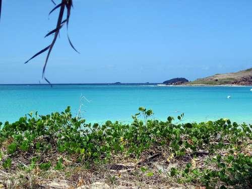 Playa Tortuga en Puerto Rico
