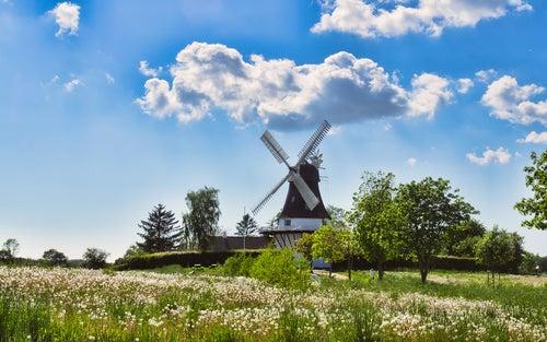 """Visitamos Fionia, la """"isla jardín"""" de Dinamarca"""