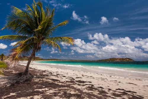 Martinica, el Caribe francés