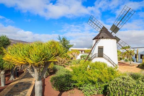 Antigua en Fuerteventura