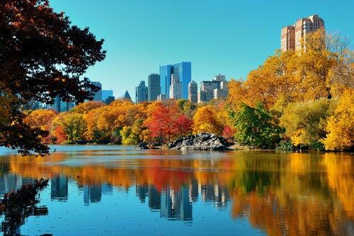 Central Park en Manhattan