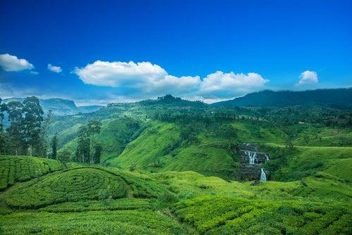 Un fascinante recorrido por Sri Lanka