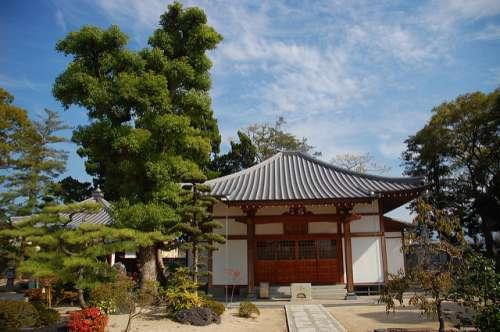 Templo 48 Shikoku Henro