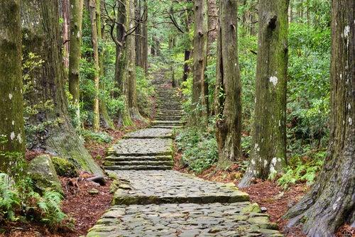 Camino Kumano en Japón