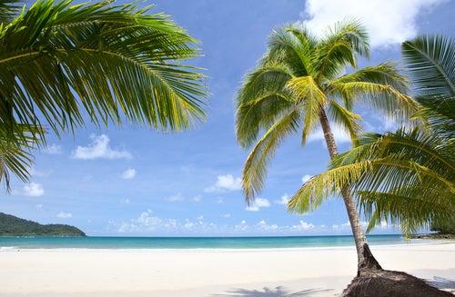 Descubrimos las islas Salomón
