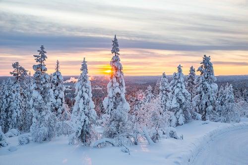 Descubrimos los secretos de Laponia