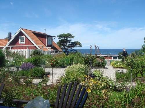 Herbario en Gotland