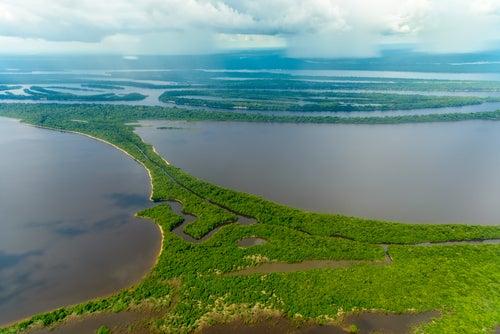 El archipiélago de Anavilhanas, un lugar mágico en el Amazonas