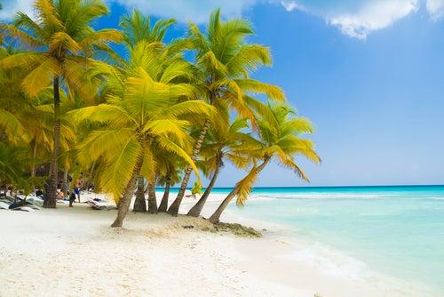 Isla Saona en Punta Cana