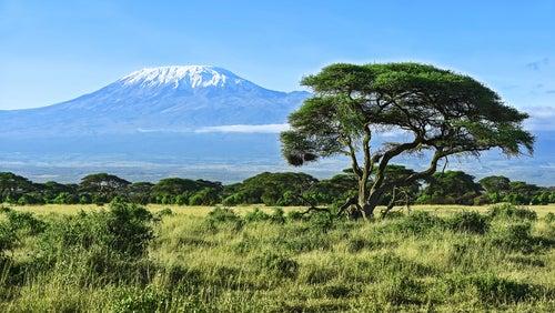 El Kilimanjaro, la cima de África
