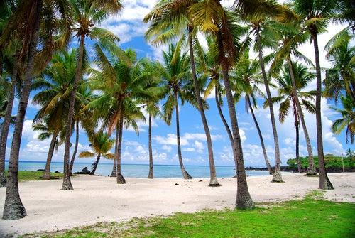 Islas Comoras