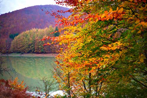 Los mejores sitios para disfrutar del otoño en España